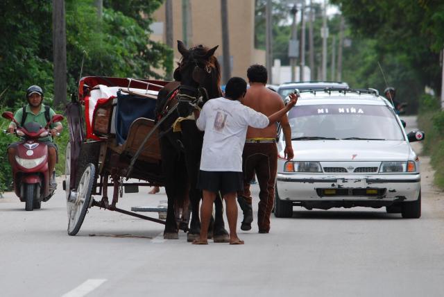 wheelless carriage
