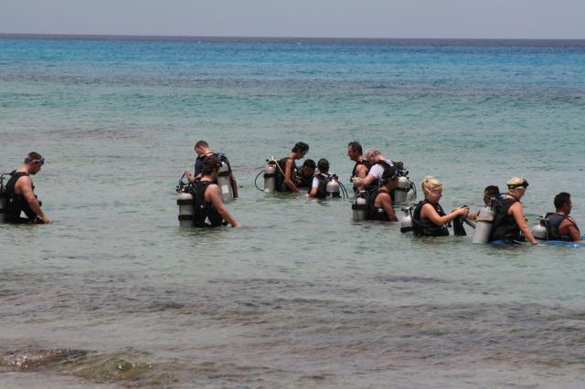 divers near shore