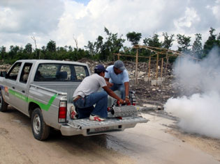 spraying for mosquitos on Cozumel